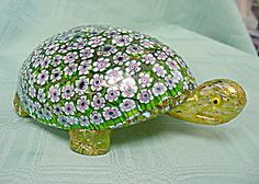 Flowered Glass Turtle
