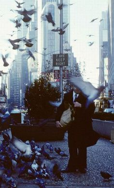 New York is known for it's fearless pigeons. We love this photo of pigeons in flight from the 80s.