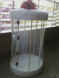 Explore - Think - Create DIY butterfly habitat Butterfly Cage, Butterfly Garden Plants, Butterfly Feeder, Butterfly House, Monarch Butterfly, Stem Projects, Animal Projects, Garden Projects, Garden Tips