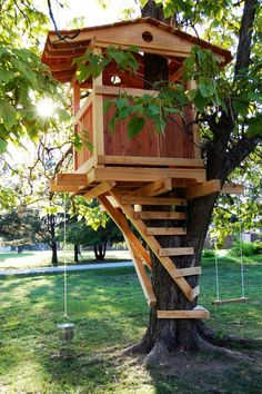 Nice treehouse. Built wrong with lag bolts. Should of used Garnier Limbs or TABs.