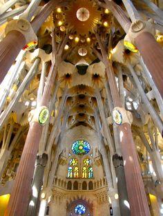 Holy trees - The columns of the interior of Sagrada Familia - Barcelona, Spain