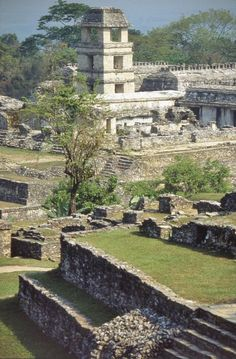 Palenque - blame the TV anime series 'The Mysterious Cities Of Gold' for my love of South American temples :)