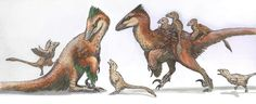 Deinonychus antirrhopus | A Dinosaur A Day