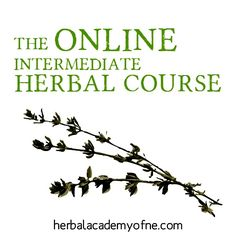 Excellent Online Herbal Course by the Herbal Academy of New England (If you want to learn about making salves, balms, herbal remedies etc. )