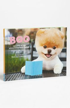 'Boo: The Life of the World's Cutest Dog' Book #boo