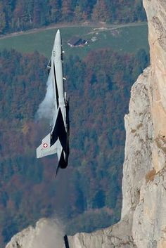 F~18 Hornet