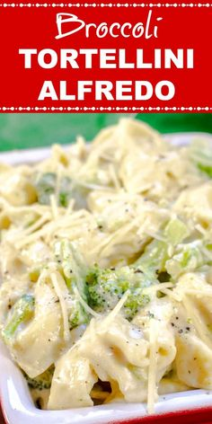 Lower Excess Fat Rooster Recipes That Basically Prime This Broccoli Tortellini Alfredo Is Bursting With Flavor With Its Pillowy Cheese-Stuffed Tortellini In A Creamy Garlic Parmesan Alfredo Sauce With Broccoli Florets. Cheese Tortellini Recipes, Tortellini Alfredo, Tortellini Bake, Chicken Tortellini, Best Pasta Recipes, Sauce Recipes, Chicken Recipes, Vegetarian Recipes, Cooking Recipes