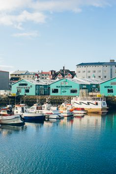 Reykjavik harbor, Kopar restaurant, Iceland travel guide —via @TheFoxandShe