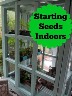 Start your garden off right by starting your seeds indoors.  It's easier than…