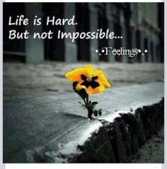 Life is Hard.  But not Impossible...