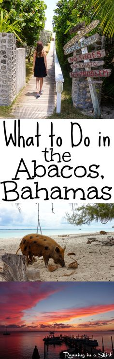 What to to Do in the Abacos, Bahamas... aka paradise!  From tropical beaches, coves, sunsets, boating and beautiful destinations.  The Abaco Islands is an ideal place for vacations.  From swimming pigs, dive bars (Nippers, Pete's Pub & On Da Beach Bar and Grill!) Find out the best things to do on the island from a frequent visitor. / Running in a Skirt.