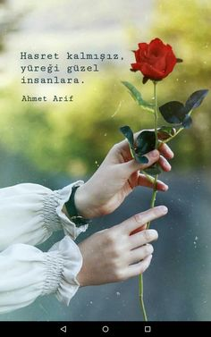 Anlamlı sözler #şiir Galaxy Wallpaper, Cool Words, Holding Hands, Islam, Life Quotes, Movie Posters, Quote, Love Flowers, Thoughts