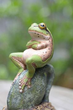 If frogs could talk!