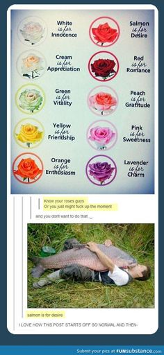 Know your colours, just the roses bit reminds me of aerith