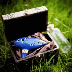 Ocarina...Actually own this exact one. I can play Nyan Cat and the theme from Howling Moving Castle and the Meow Mix theme and the Tetrix theme. ^_^