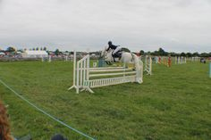 Pony gets some serious air time Show Jumping, Pony, Photo And Video, Summer, Animals, Pony Horse, Summer Time, Animaux, Summer Recipes