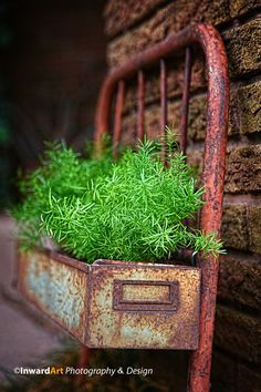 Repurpose container idea Reuse what you have...give it a new life tweaking your perspective.