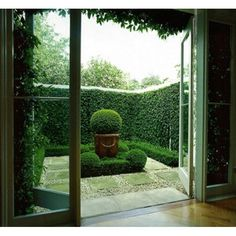 Small Garden Courtyard With Hedge Border And Round Topiary Tree In Box Hedge Small Courtyard Gardens, Small Courtyards, Small Gardens, Outdoor Gardens, French Courtyard, Roof Gardens, Formal Gardens, Outdoor Plants, Outdoor Spaces
