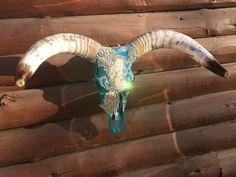 Teal Watusi cow skull