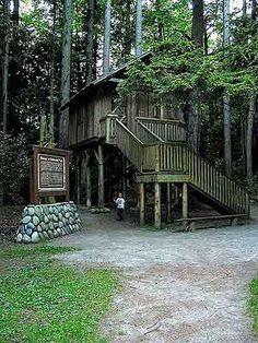 Redwood Park, Surrey, BC.