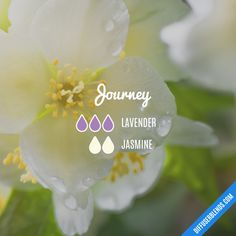 Journey - Essential Oil Diffuser Blend