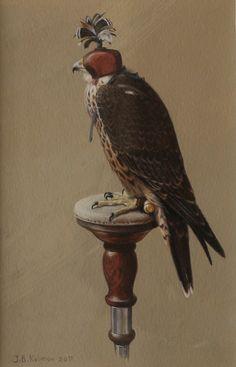 Peregrine falcon  Miniature  J.B.Kolman