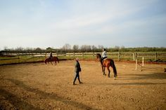 Dressage/jumping lessons by a level2 BHS trainer. Horse Riding Croatia. www.stable-mates.com