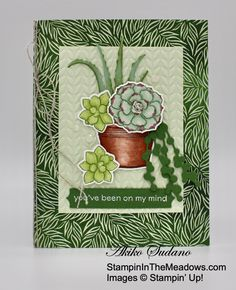 Succulent Pots, Potted Succulents, Hand Stamped Cards, Stamping Up Cards, Flowers Nature, Crafty Craft, Creative Crafts, Homemade Cards, Your Cards