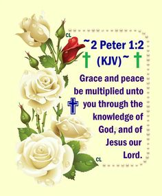 2 Peter 1:2 Grace & Peace be multiplied ...