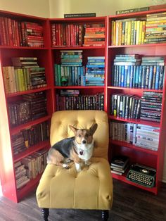 I really hate organizing books by color (except for red books about China ), but this is a sharp red bookshelf and great picture.