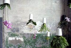 Sky Planter – Small Space Gardening Ideas by Patrick Morris - DesignToDesign Magazine - DesignToDesign.com , The Ultimate Online design Magazine