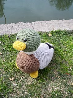 Introducing Drake the Mallard Duck! Swimming happily along, this cutie will make anyone smile!