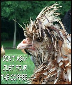For all my coffee drinking friends . and all those who enjoy poking fun at coffee drinkers! Coffee Talk, Coffee Is Life, I Love Coffee, Coffee Break, My Coffee, Morning Coffee, Good Morning, Coffee Lovers, Monday Morning