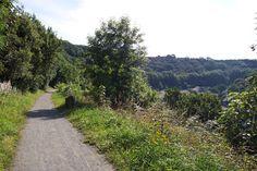 Tarka Trail Ilfracombe