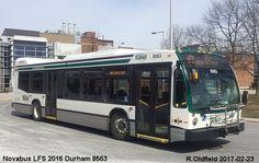 Novabus LFS 2016 Durham Transit