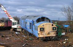 37013 minus bogies at EMR Kingsbury along with 47779. 30th Dec 2005 --- England