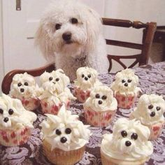 The Top most AMAZING Cupcake Ideas! – My Incredible Recipes
