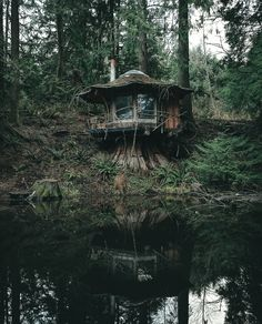 The Stump Cabin in the Pacific North West . - The Stump Cabin in the Pacific North West The Effective Pictures We Offer You About decor art A q - Forest Cabin, Forest House, Tiny House Cabin, Cabin Homes, Tiny Houses, Cabins In The Woods, House In The Woods, House In Nature, Haus Am See