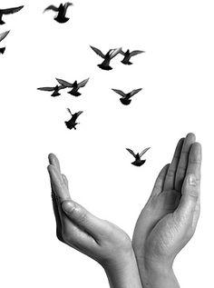 Fingerspiel: Fingerlein wollen Vögel sein