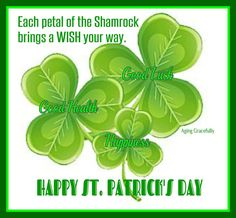 56825b93f 95 Best St Patrick's day images in 2019 | St patricks day, Fanny ...
