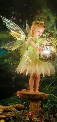 http://www.curiositiesbydickens.com/wp-content/uploads/fairy-lantern.jpg