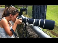 Bird and Wildlife Photography Equipment: Lenses, cameras, teleconverters, tripods, monopods - YouTube