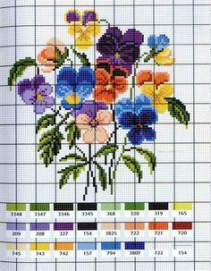 Violas chart