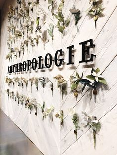Anthropologie Opens First Store In Germany - Düsseldorf! Stores Like Anthropologie, Anthropologie Display, Visual Merchandising, Instagram Wand, Window Display Retail, Display Windows, Retail Store Design, Retail Stores, Talk To Strangers