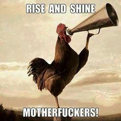 Good morning Pinterest :)