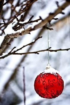 #Christmas #photography  #winter Red glass ornament snow ToniK Joyeux Noël christmas4u