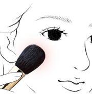 化粧筆の使い方 | 筆を知る「白鳳堂」