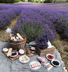 A picnic in Provence! Oh how I long to go there. Look at that beautiful lavender field. Comida Picnic, Picnic Date, Photo Images, Days Like This, Lavender Fields, Lavander, Lavender Flowers, Belleza Natural, Learn To Cook