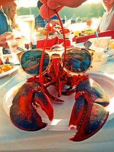 """My Lobster is ready for the guests, beachside, at my """"La Crema"""" end of summer soiree....."""