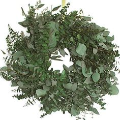 17 in Emerald Bay Wreath ** Want additional info? Click on the image.